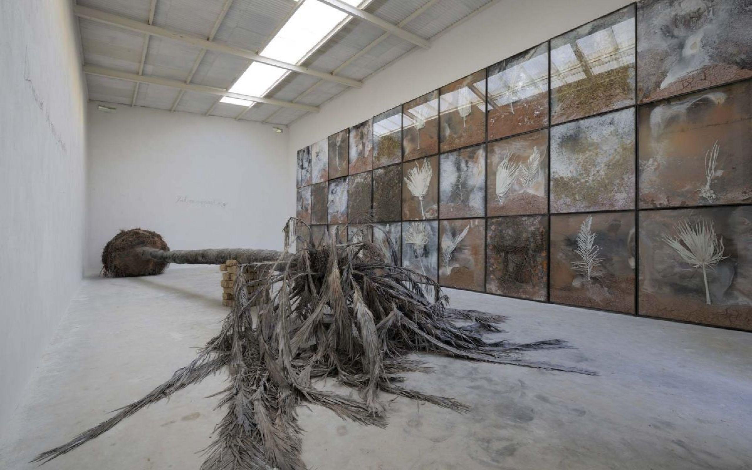 Anselm Kiefer: Palmsonntag, 2007, Sammlung Grothe  Foto: Charles Duprat © Anselm Kiefer