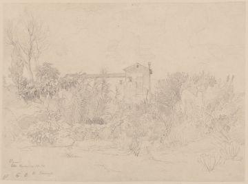 Johann Wilhelm Schirmer (1807 - 1863), Vigna Barberini 13. Okt., ohne Datierung